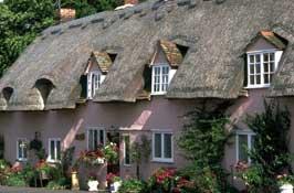 Pleshey-Village